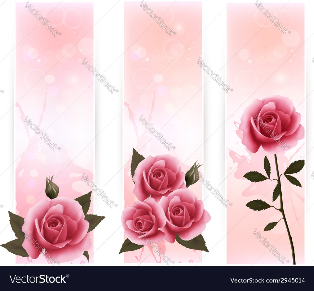 Three banners with pink roses vector | Price: 1 Credit (USD $1)