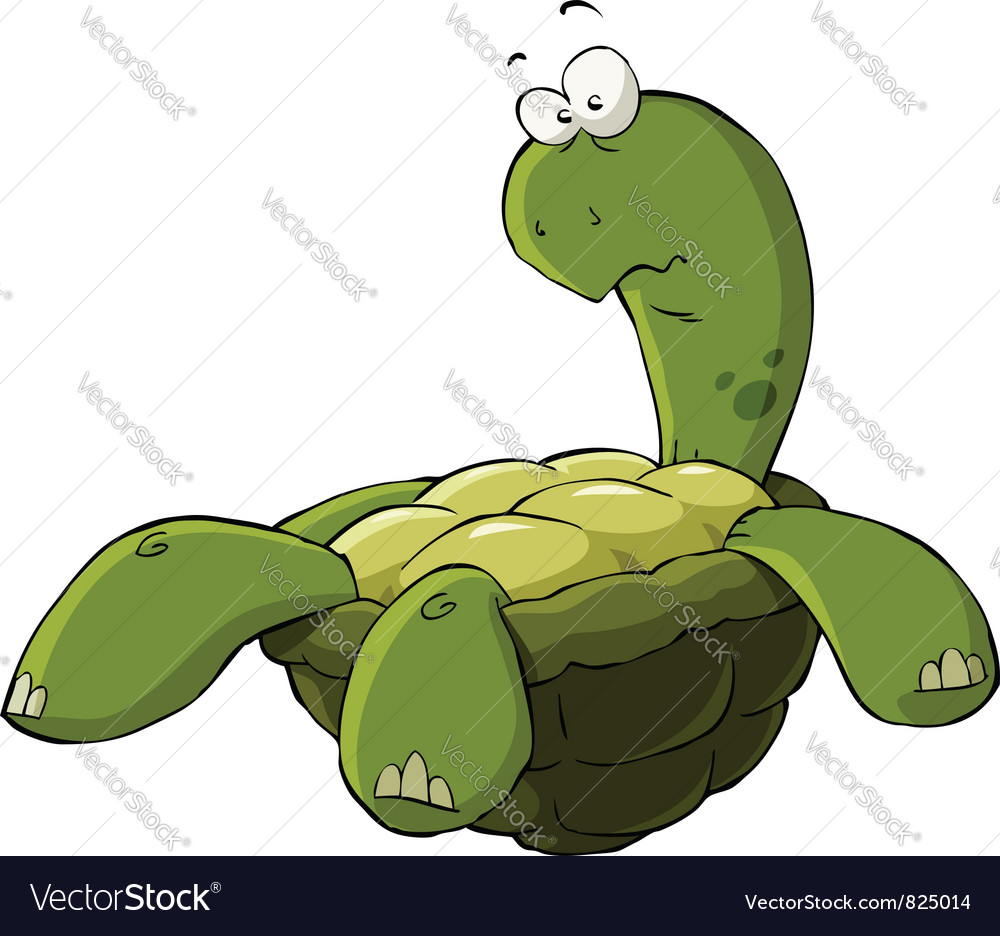 Turtle vector | Price: 3 Credit (USD $3)