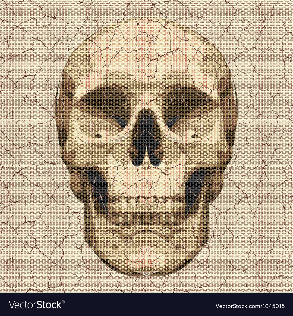 Cracked canvas skull vector | Price: 1 Credit (USD $1)
