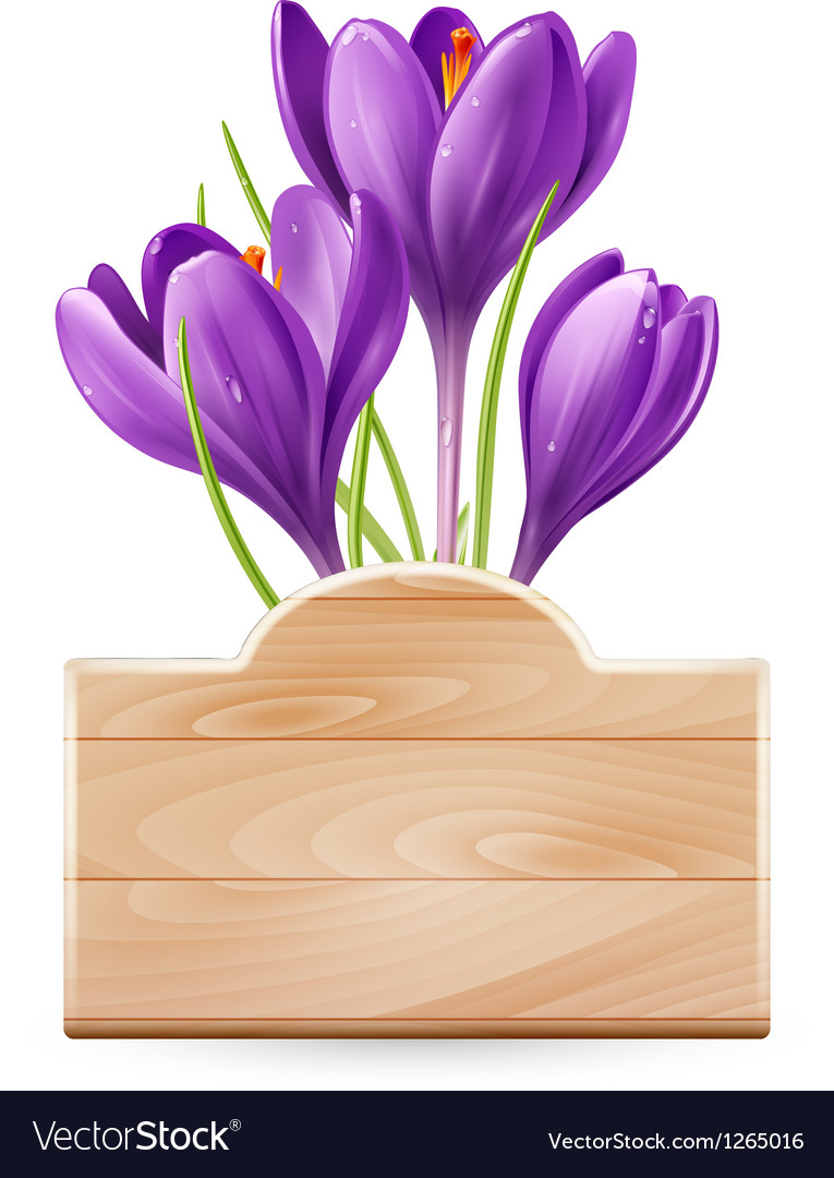 Spring design vector | Price: 3 Credit (USD $3)