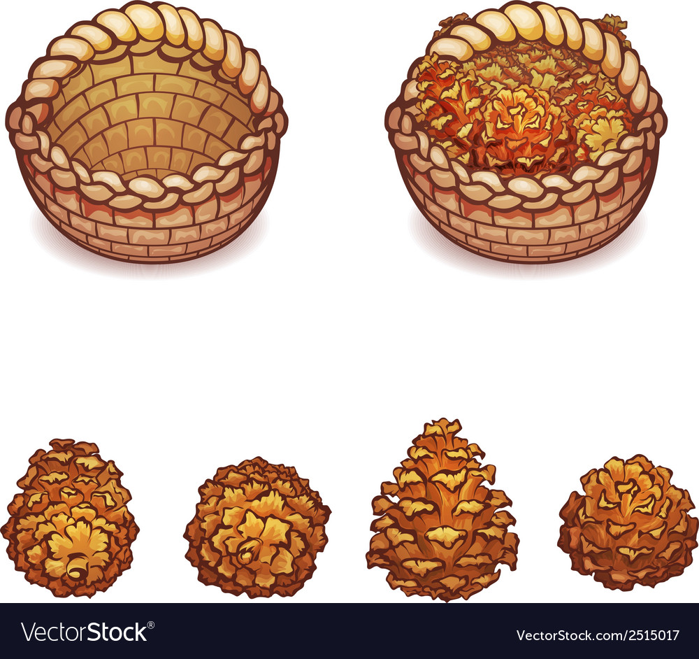 Basket with the pine cones vector | Price: 1 Credit (USD $1)