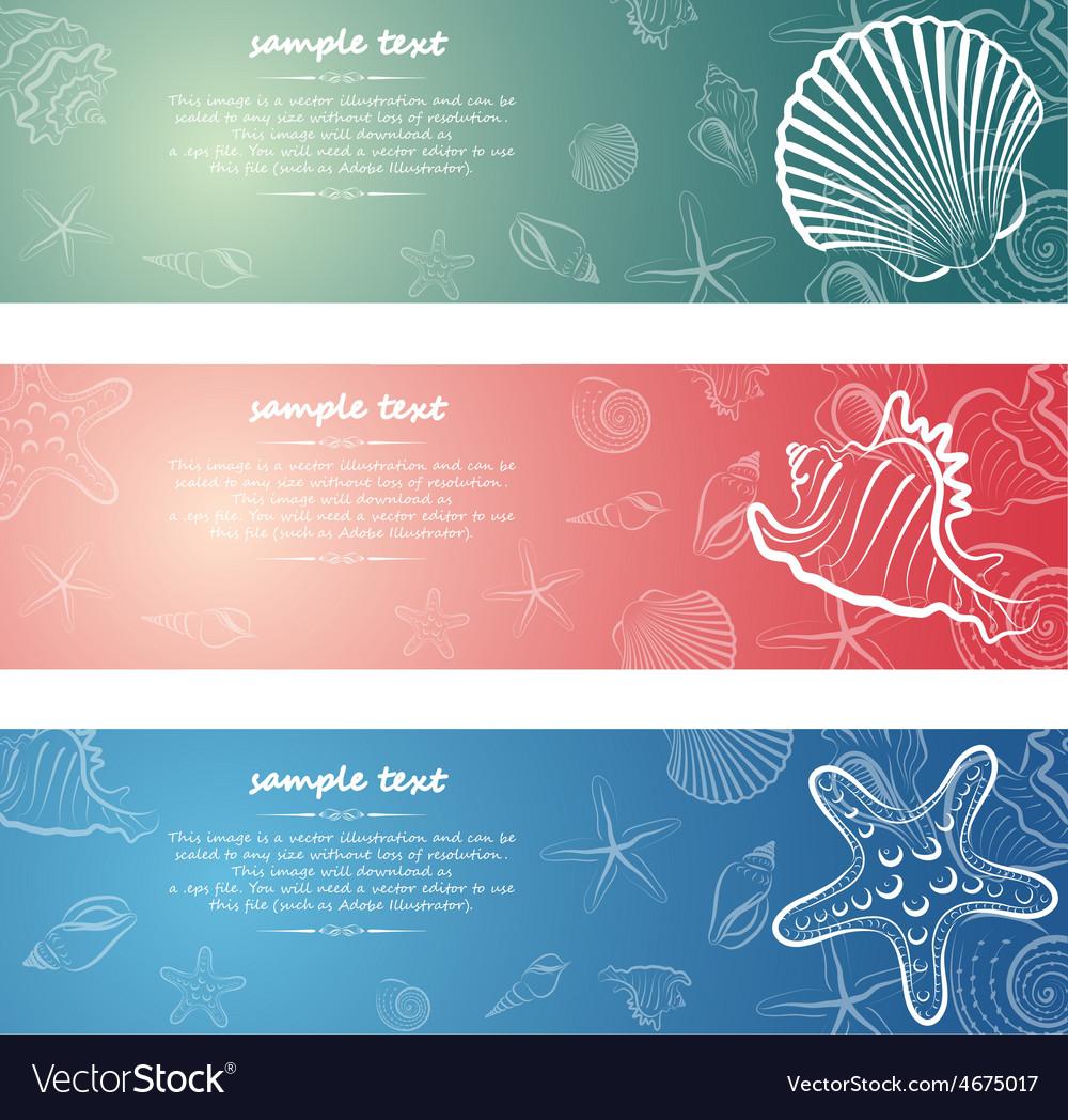 Seashell card7 vector | Price: 1 Credit (USD $1)