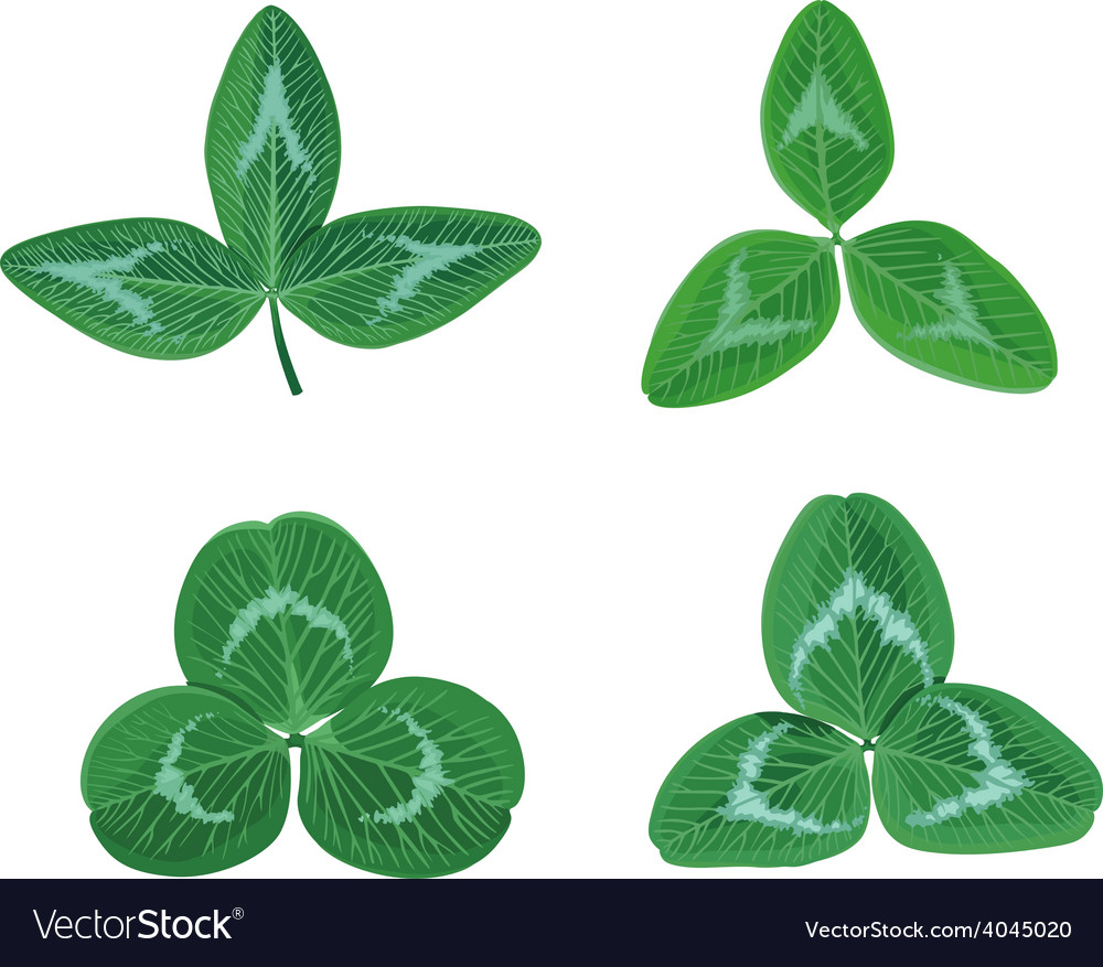 Clover set vector | Price: 1 Credit (USD $1)
