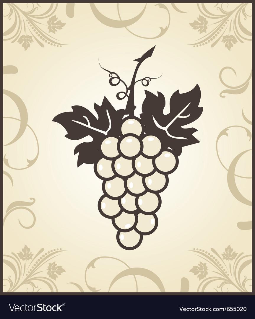 Retro engraving of grapevine - vector | Price: 1 Credit (USD $1)