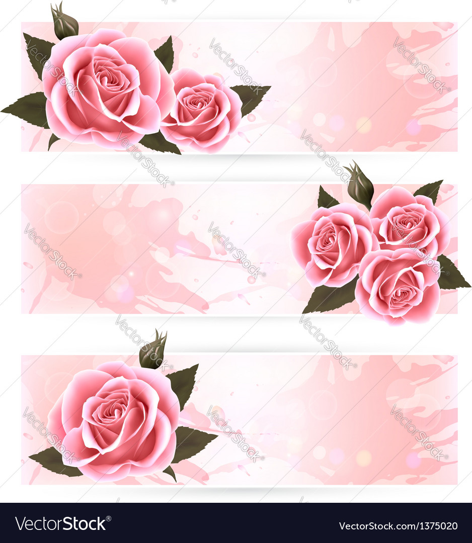 Three holiday banners with pink beautiful roses vector | Price: 3 Credit (USD $3)