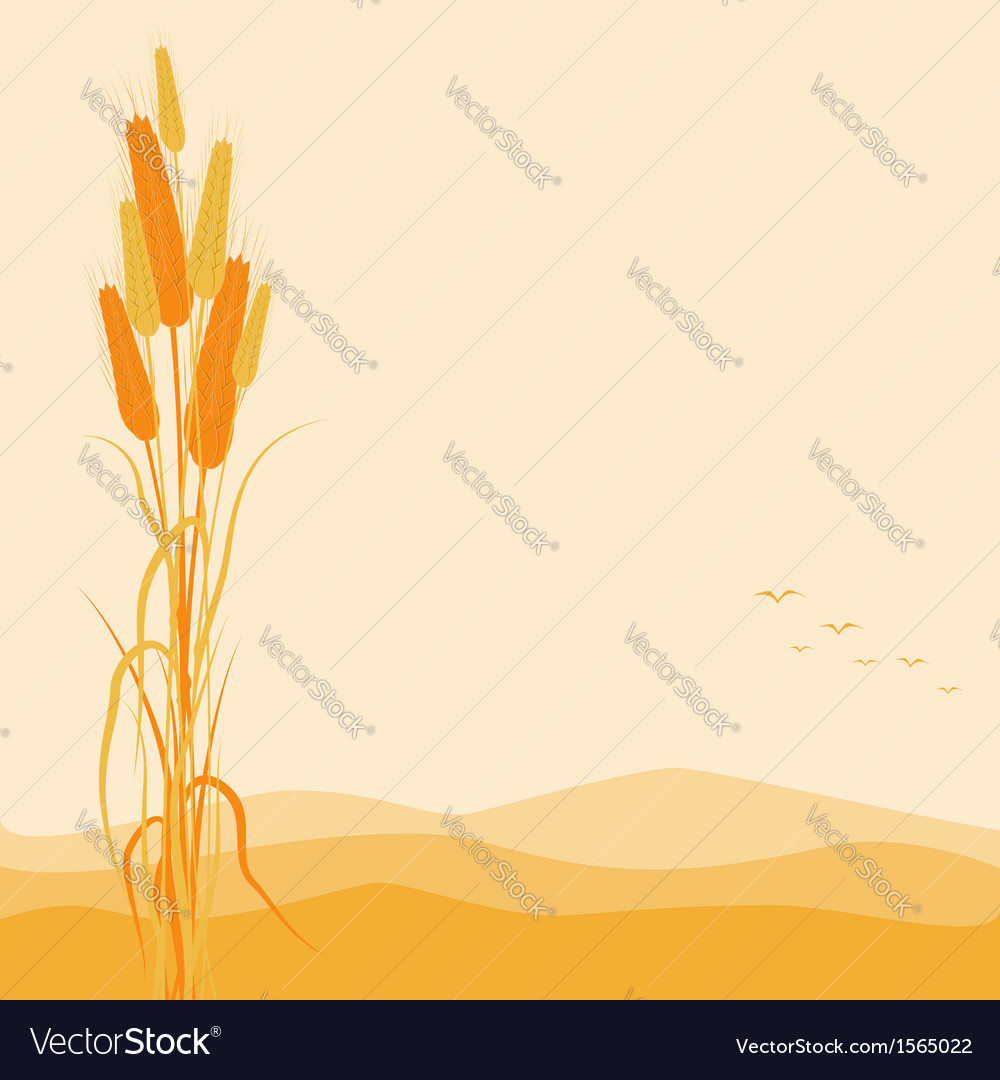 Golden wheat ears on autumn background vector | Price: 1 Credit (USD $1)