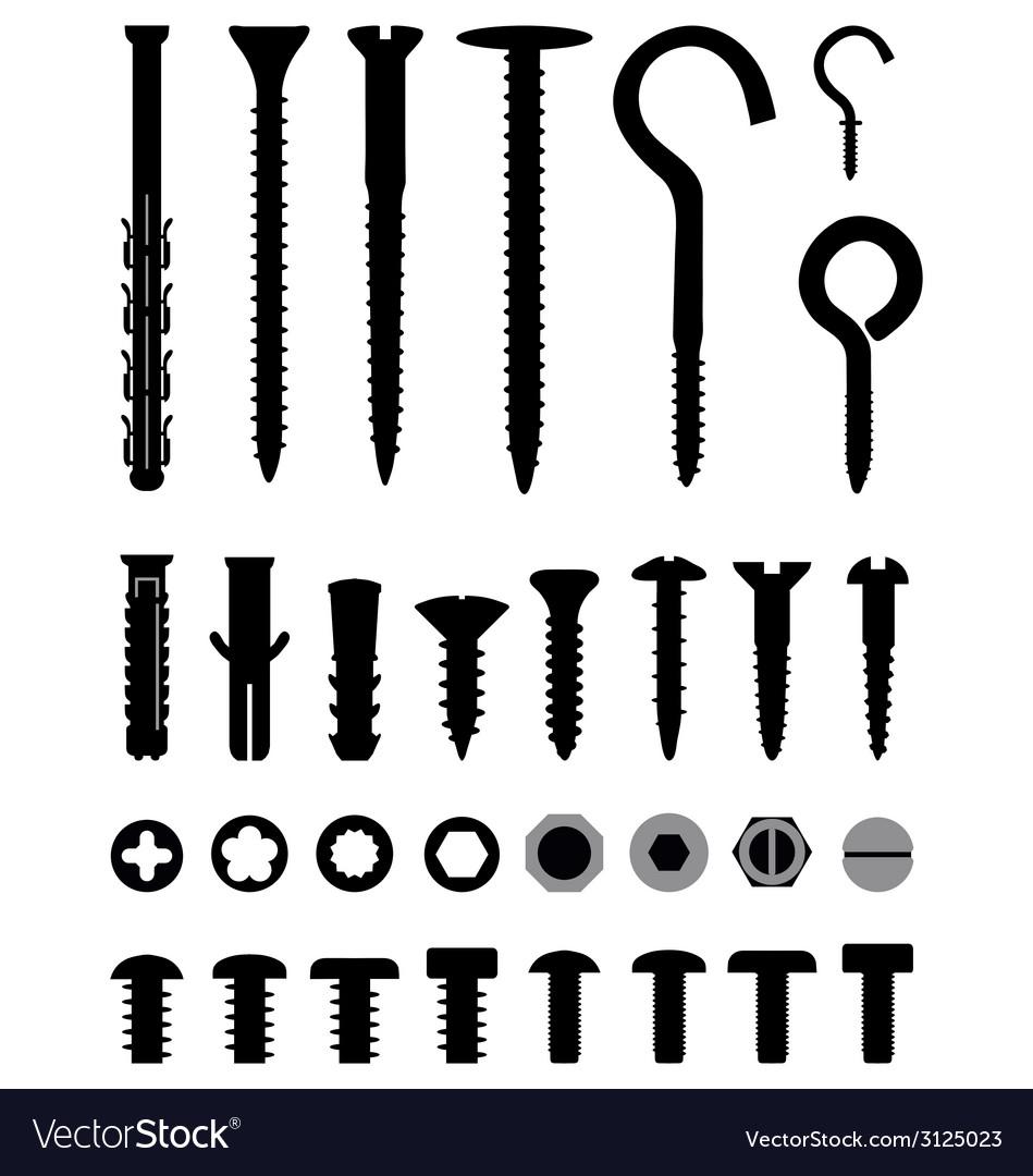 Screws vector | Price: 1 Credit (USD $1)
