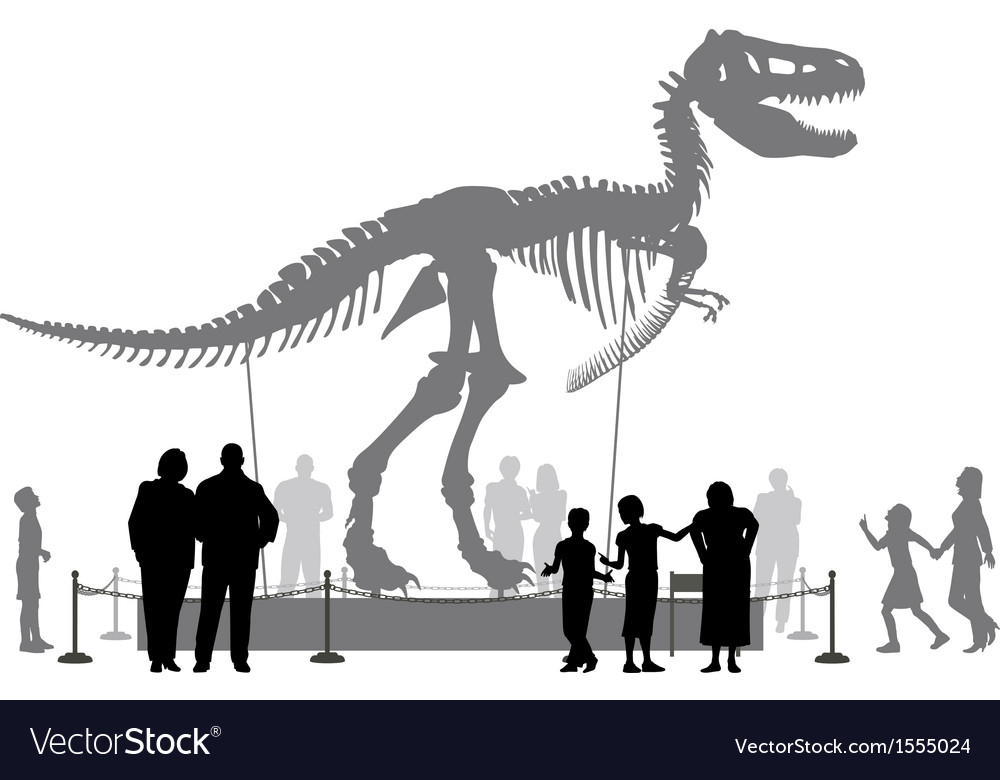 Dinosaur museum vector | Price: 1 Credit (USD $1)