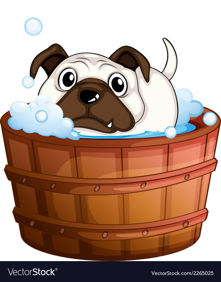 A bulldog inside the bathtub vector | Price: 1 Credit (USD $1)