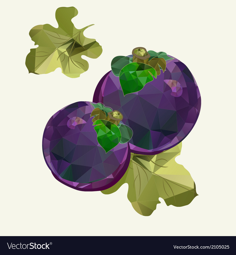 Polygonal mangosteen vector | Price: 1 Credit (USD $1)