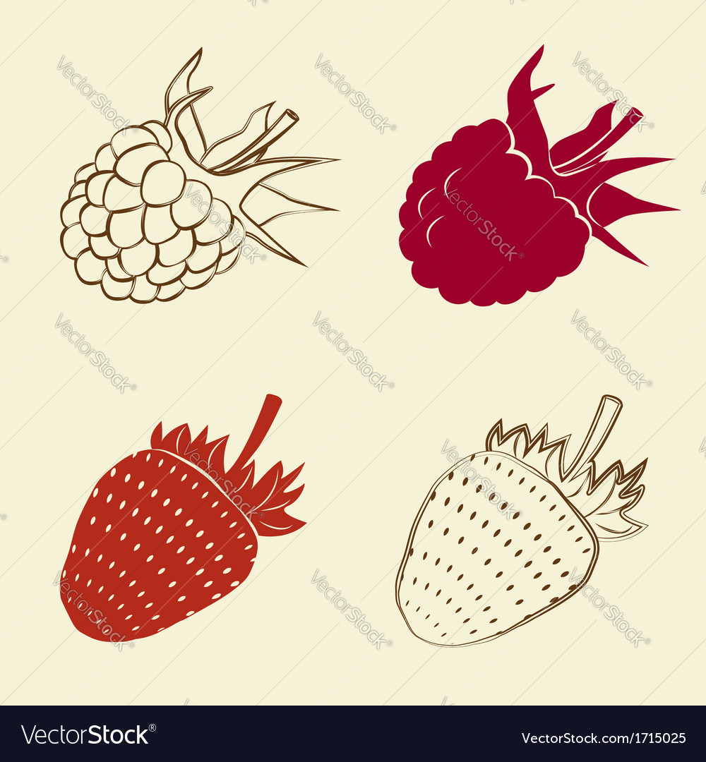 Raspberry and strawberry icons vector | Price: 1 Credit (USD $1)