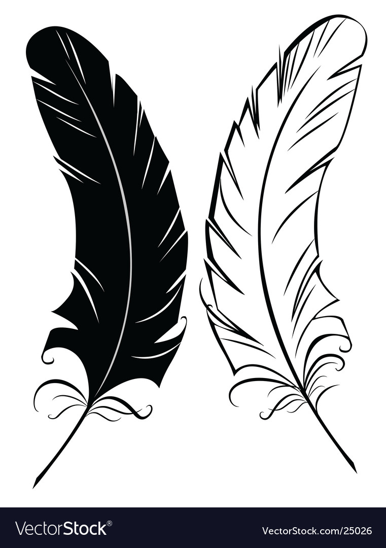 Silhouette black and white feather vector