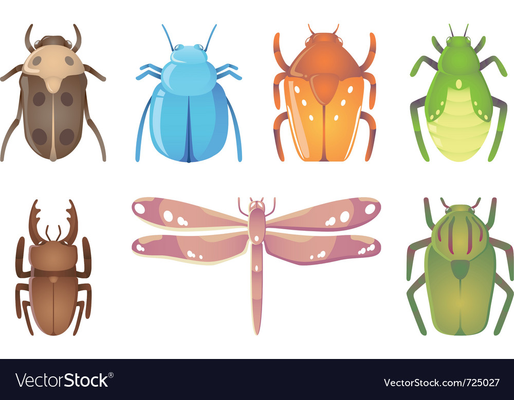 Bugs vector   Price: 1 Credit (USD $1)