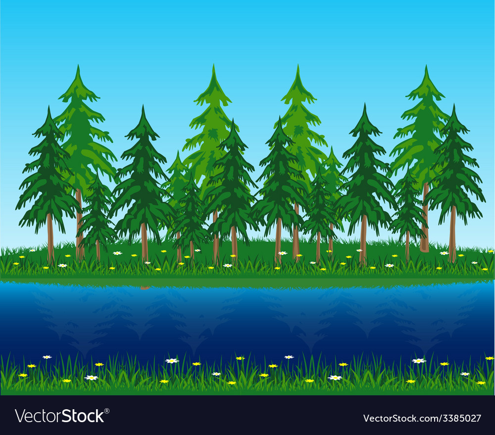 Coniferous riverside wood vector | Price: 1 Credit (USD $1)