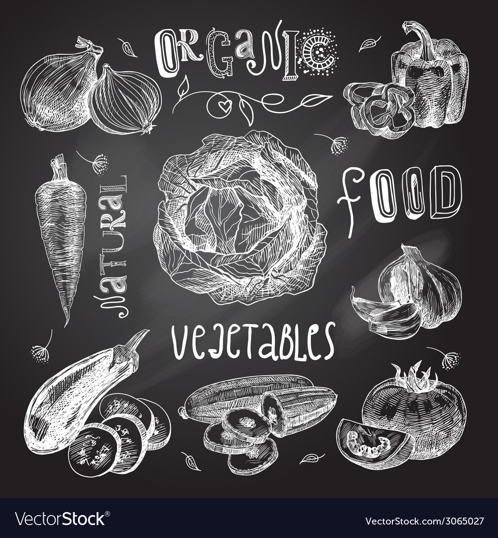 Vegetables sketch set chalkboard vector