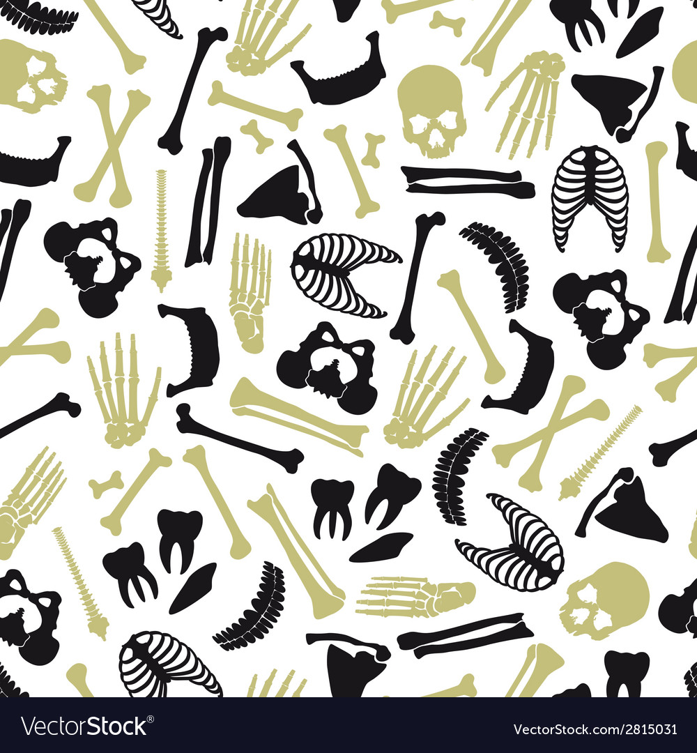 Human bones symbols seamless pattern eps10 vector | Price: 1 Credit (USD $1)