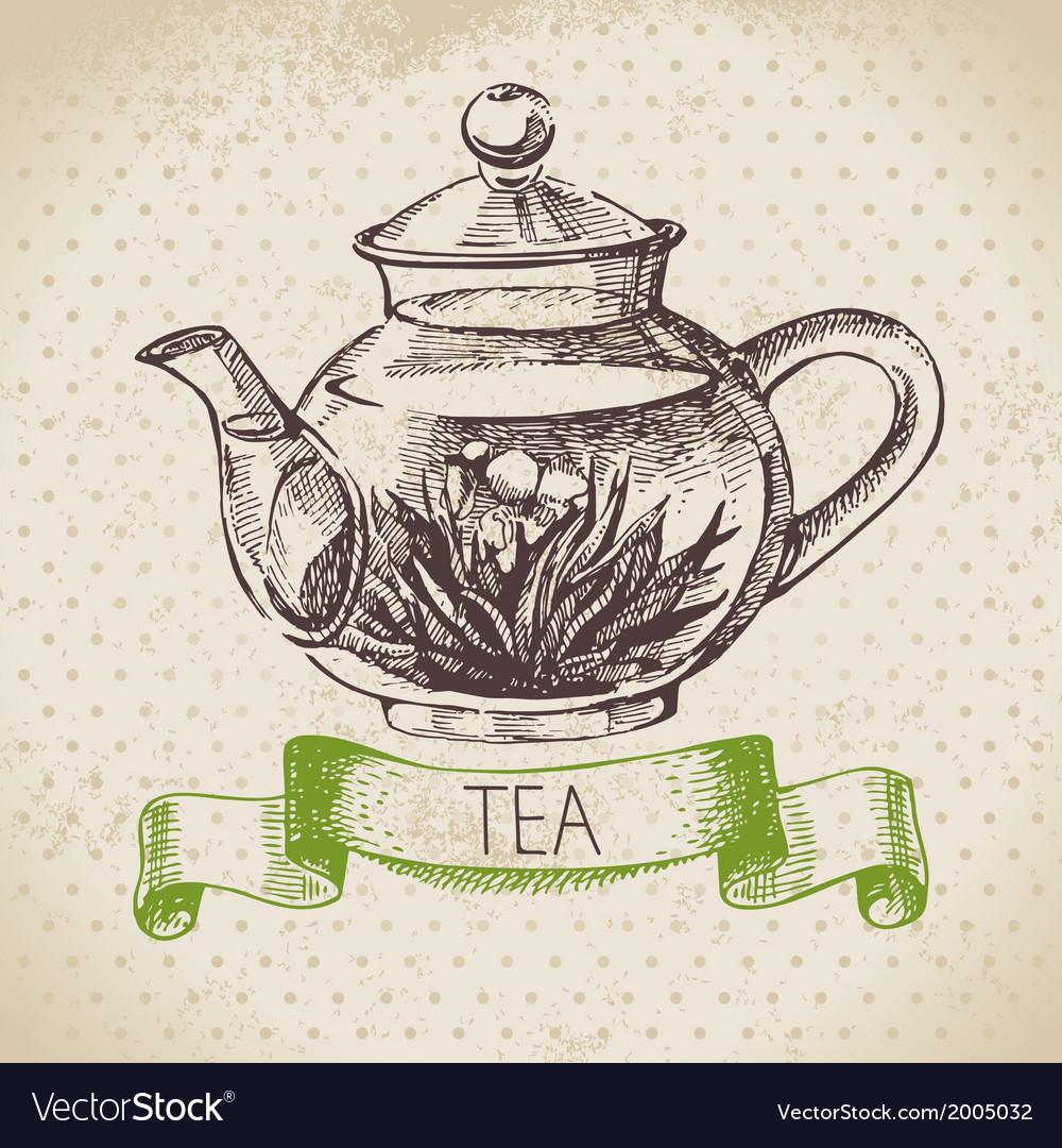 Tea vintage background hand drawn sketch menu des vector | Price: 1 Credit (USD $1)