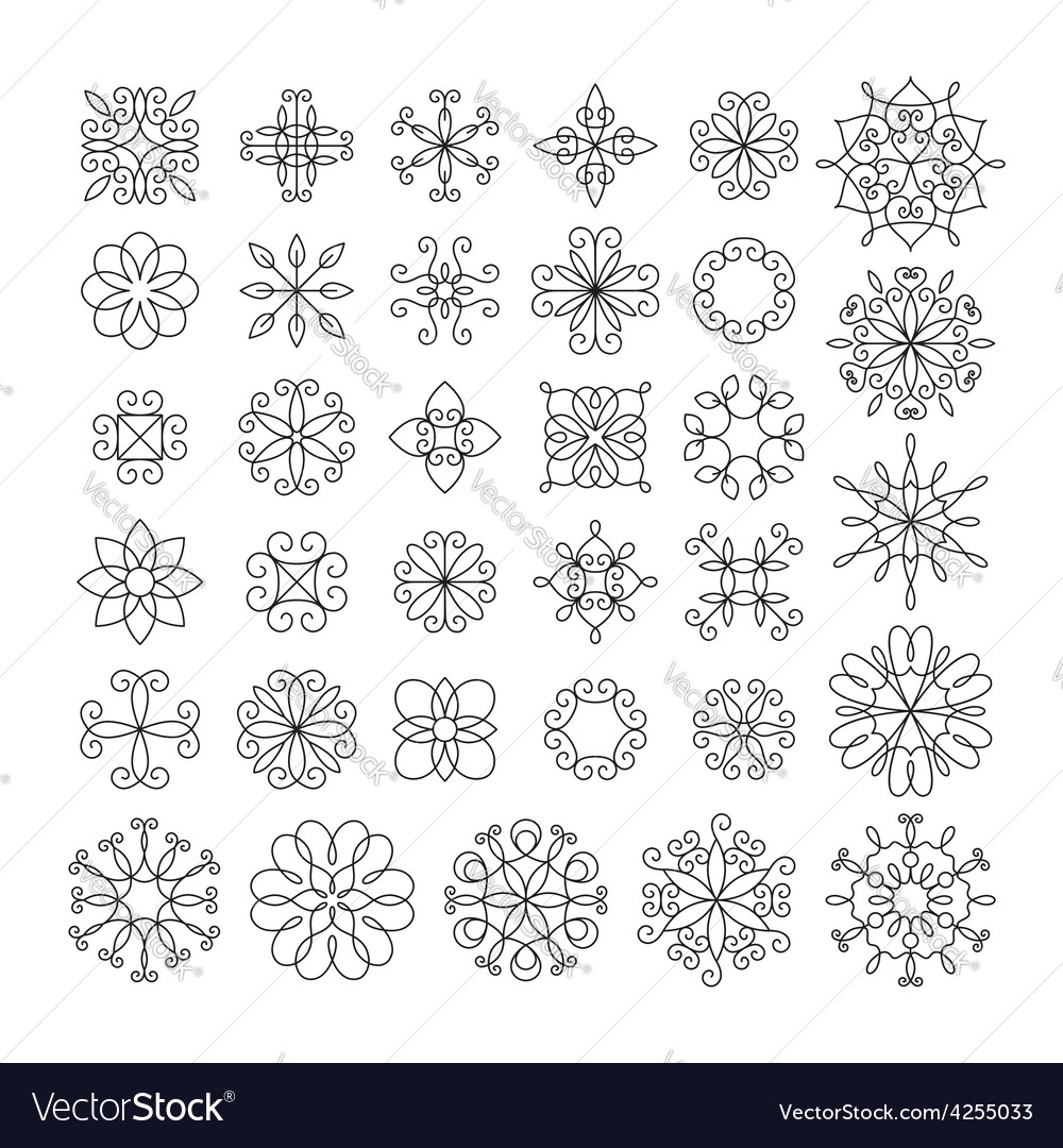 Set of contour linear flowers vector | Price: 1 Credit (USD $1)