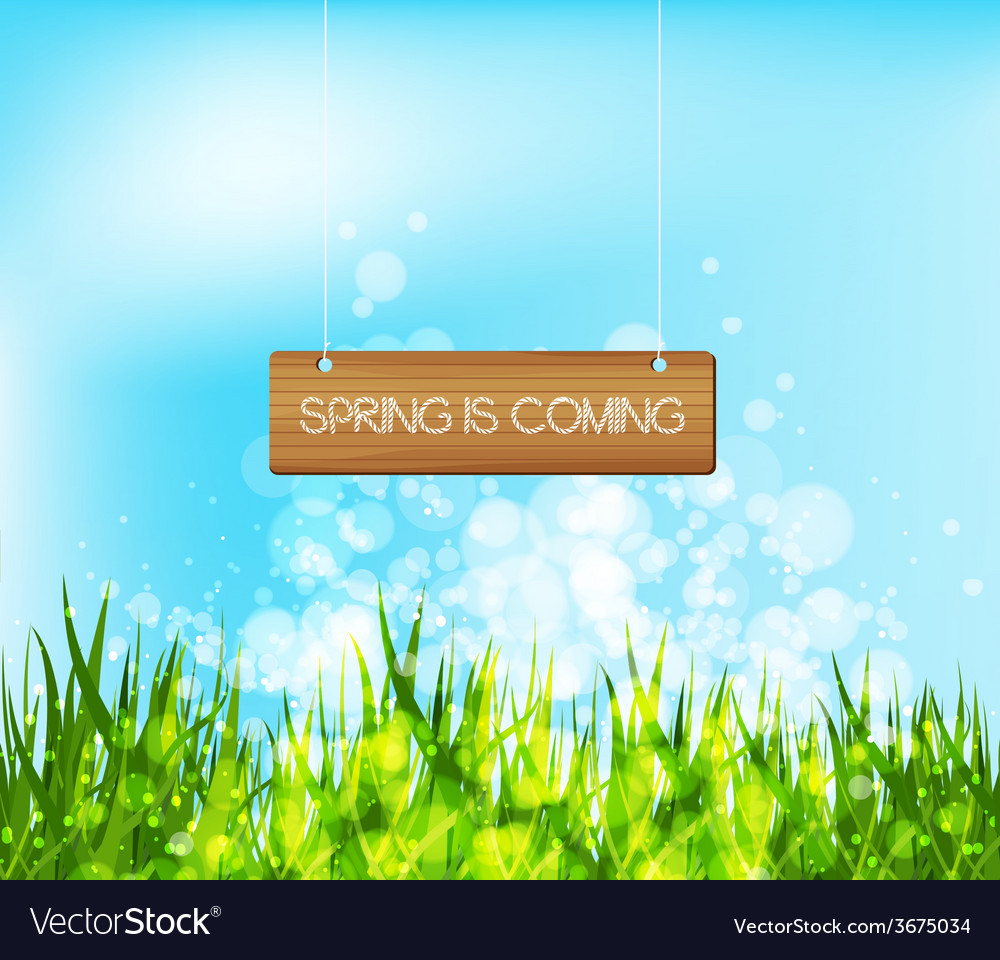 Spring is coming concept with wood sign vector | Price: 1 Credit (USD $1)