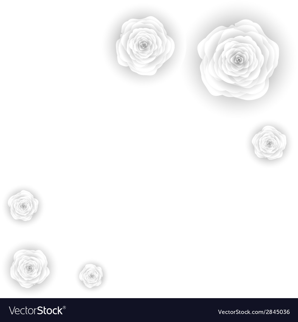 Decorative floral background with flowers of white vector   Price: 1 Credit (USD $1)