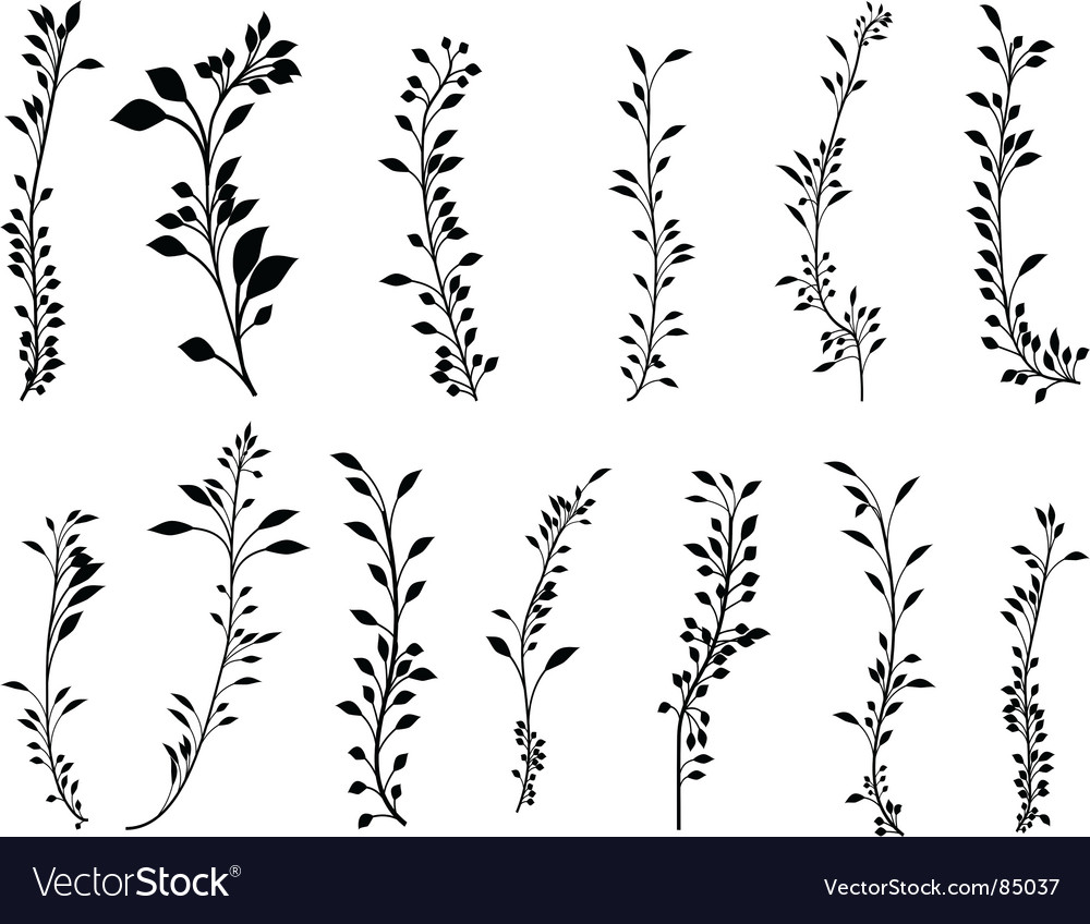 Foliage set vector