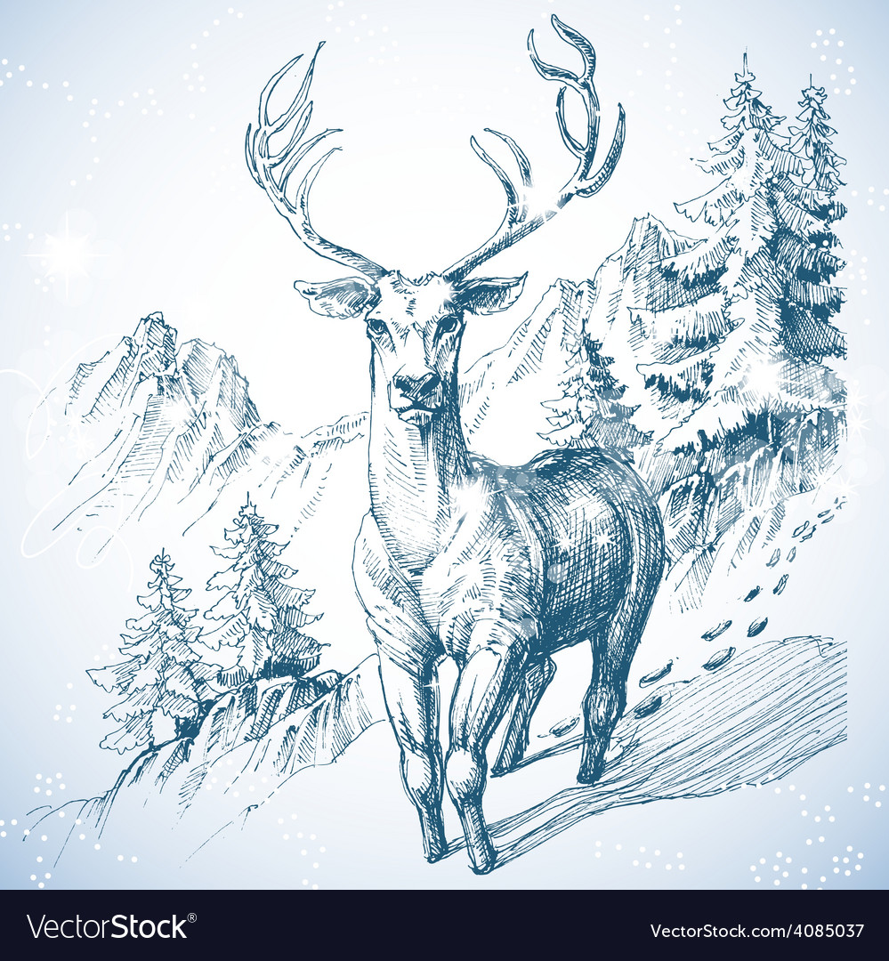 Mountain pine tree forest and deer sketch vector | Price: 3 Credit (USD $3)