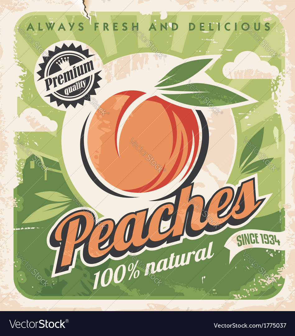 Peaches vintage poster template vector | Price: 1 Credit (USD $1)