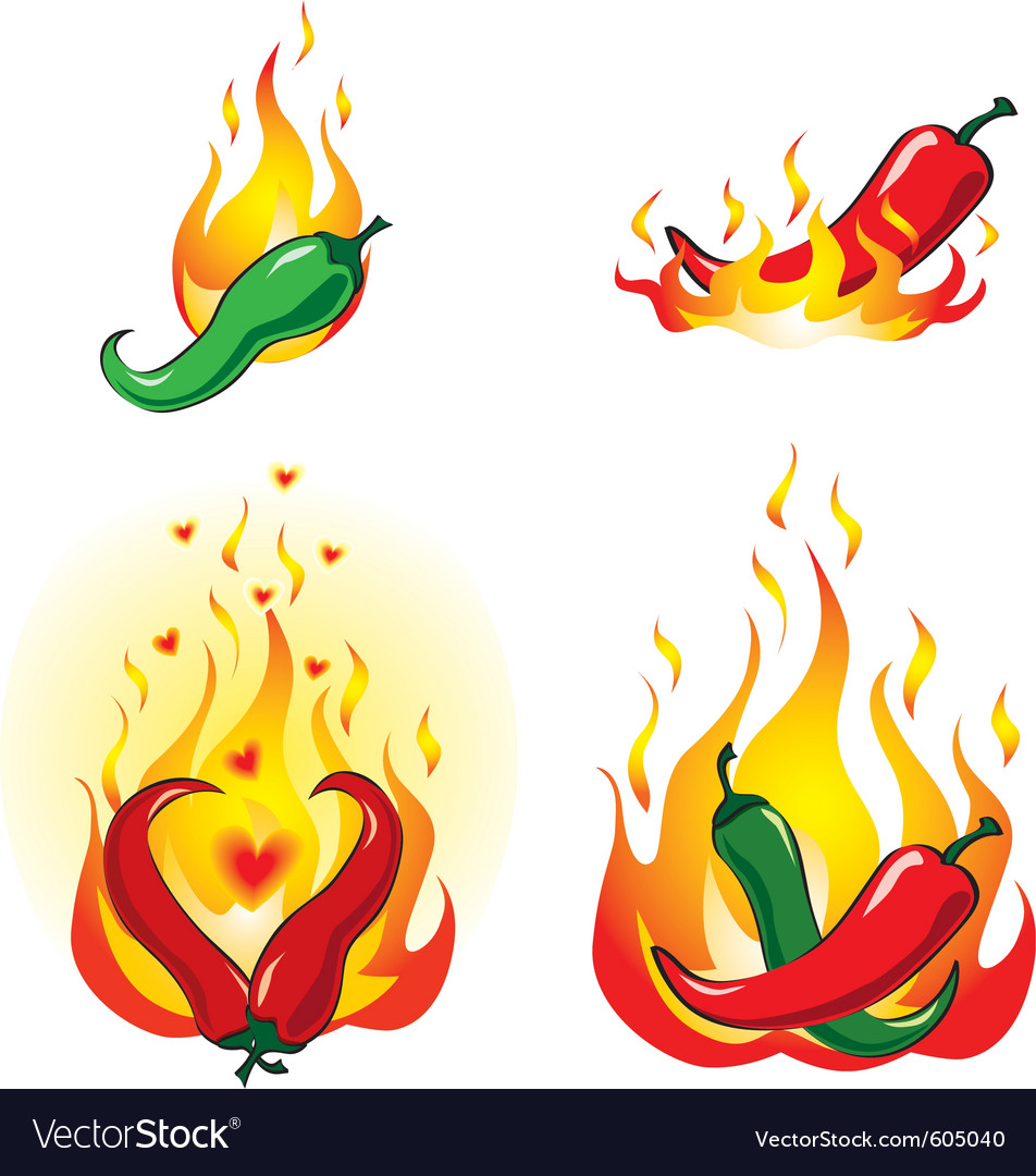 Chili peppers vector | Price: 1 Credit (USD $1)