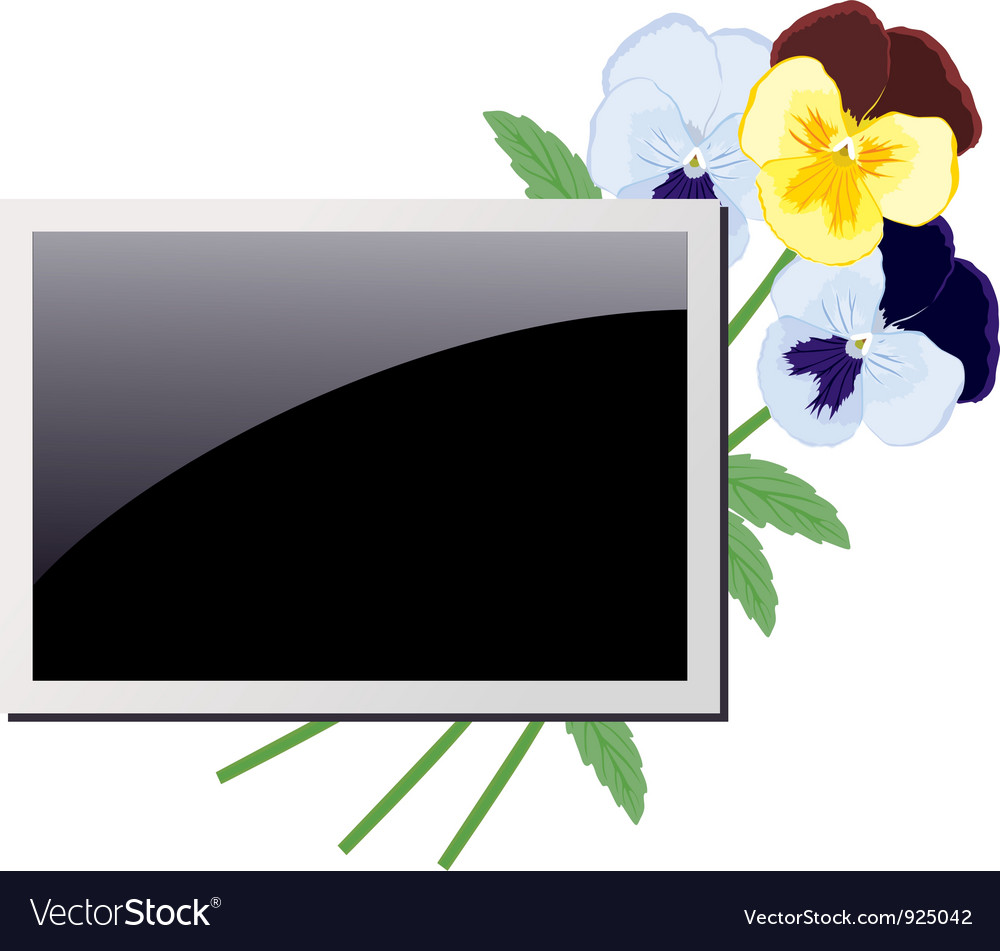 Photo frame in the violets vector   Price: 1 Credit (USD $1)