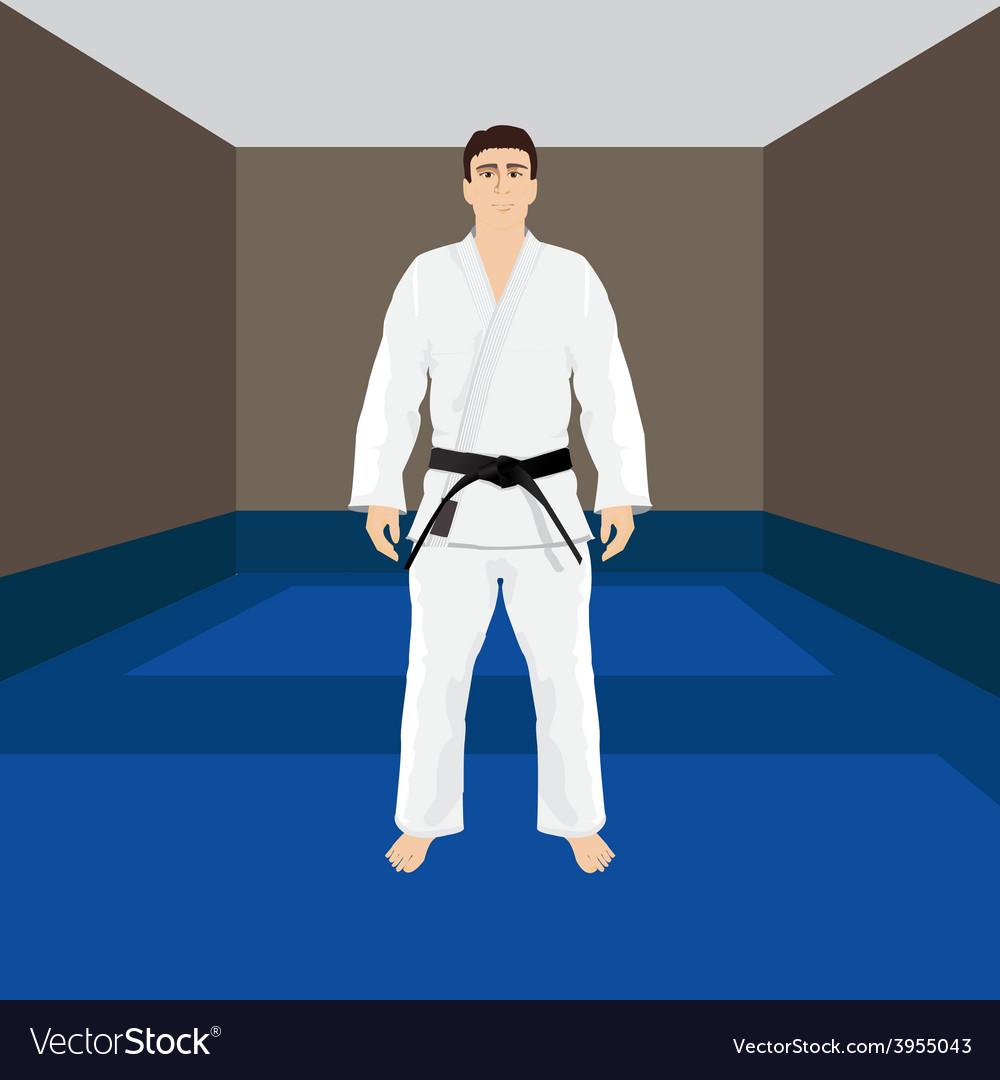 Men in sport wear judo and jiu-jitsu vector | Price: 1 Credit (USD $1)