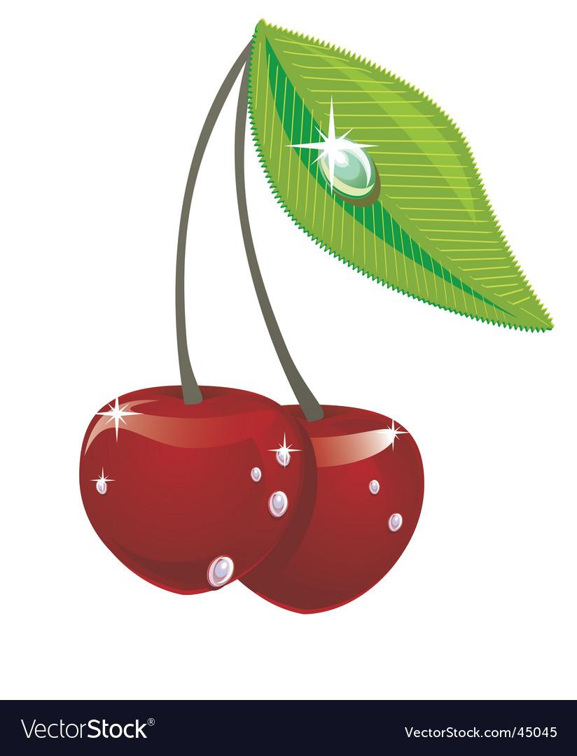 Cherries vector   Price: 1 Credit (USD $1)
