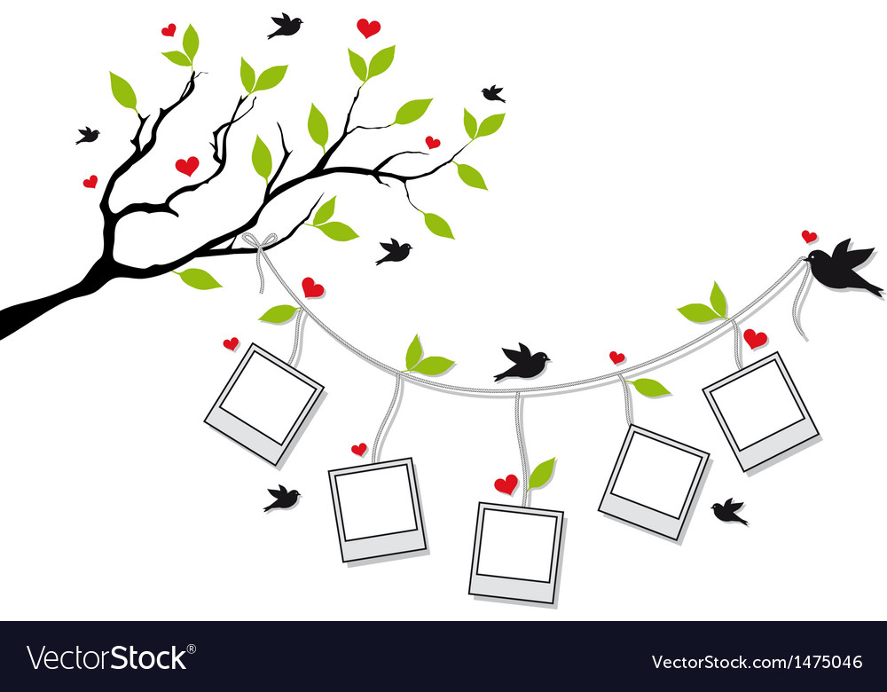 Tree with photo frames and birds vector | Price: 1 Credit (USD $1)