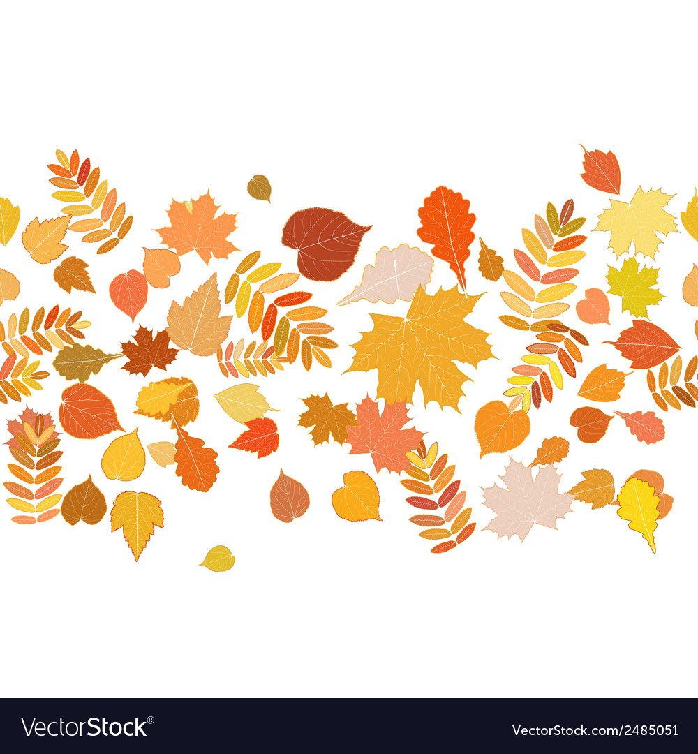Autumn background with colorful leaves vector | Price: 1 Credit (USD $1)