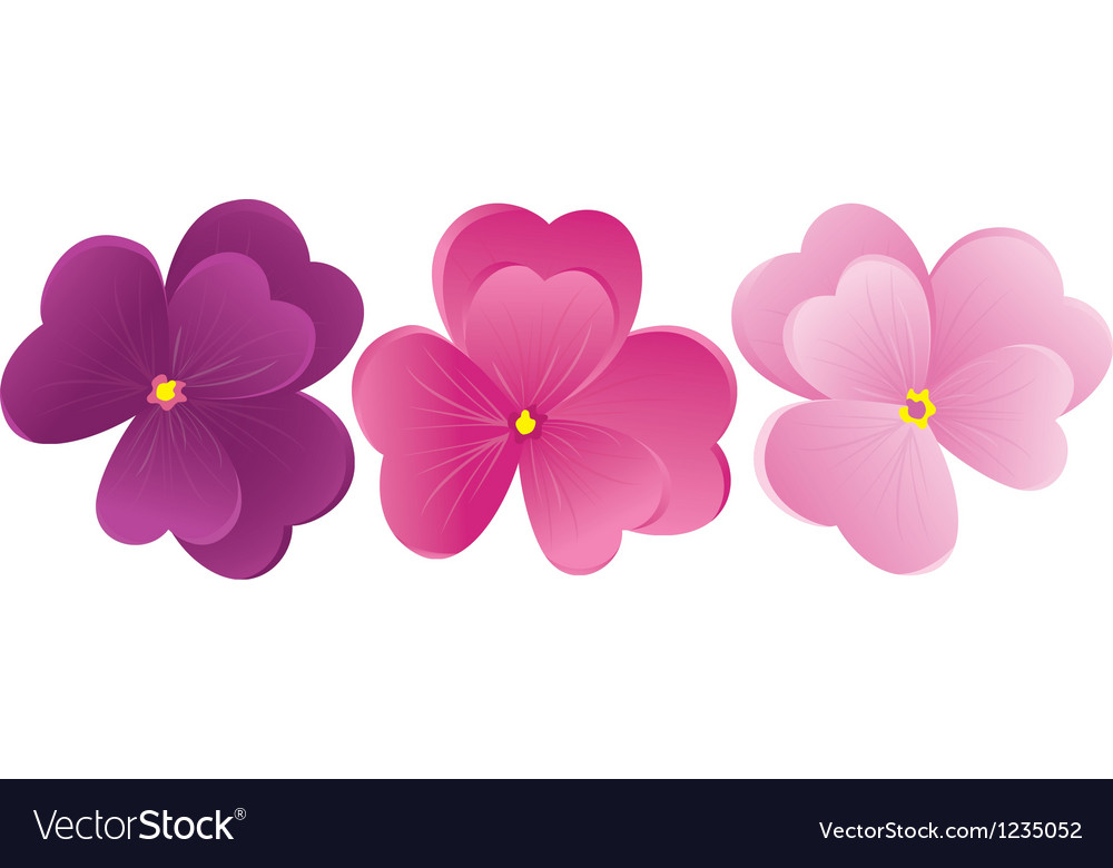 Violet flowers vector | Price: 1 Credit (USD $1)