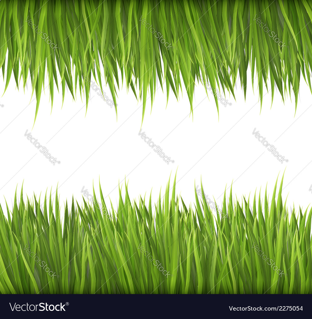 Nature background with green grass vector | Price: 1 Credit (USD $1)