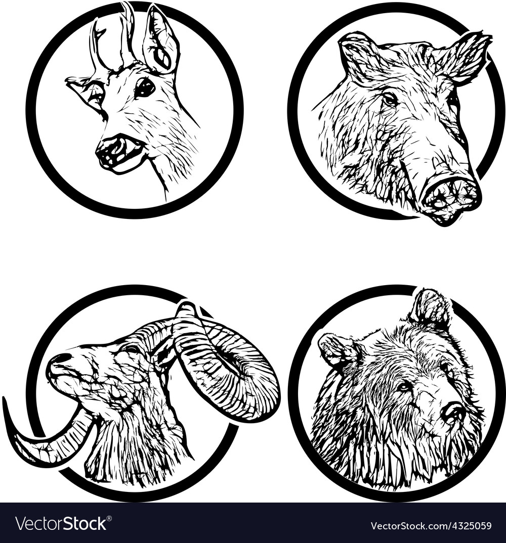 Forest animals rings 1 vector | Price: 3 Credit (USD $3)