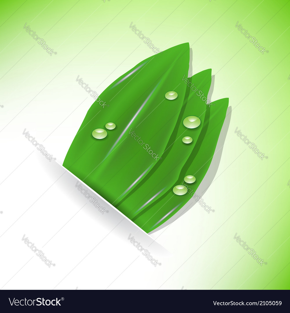 Green plant and drop vector | Price: 1 Credit (USD $1)