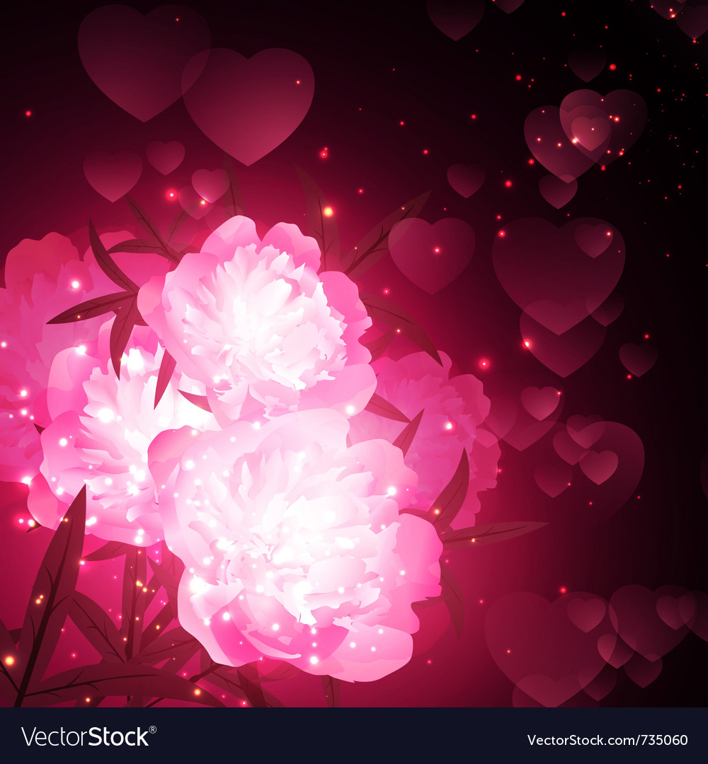 Peony flowers vector | Price: 1 Credit (USD $1)