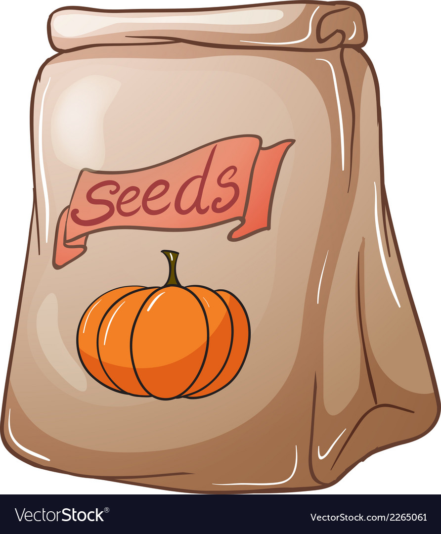 A pack of squash seeds vector | Price: 1 Credit (USD $1)
