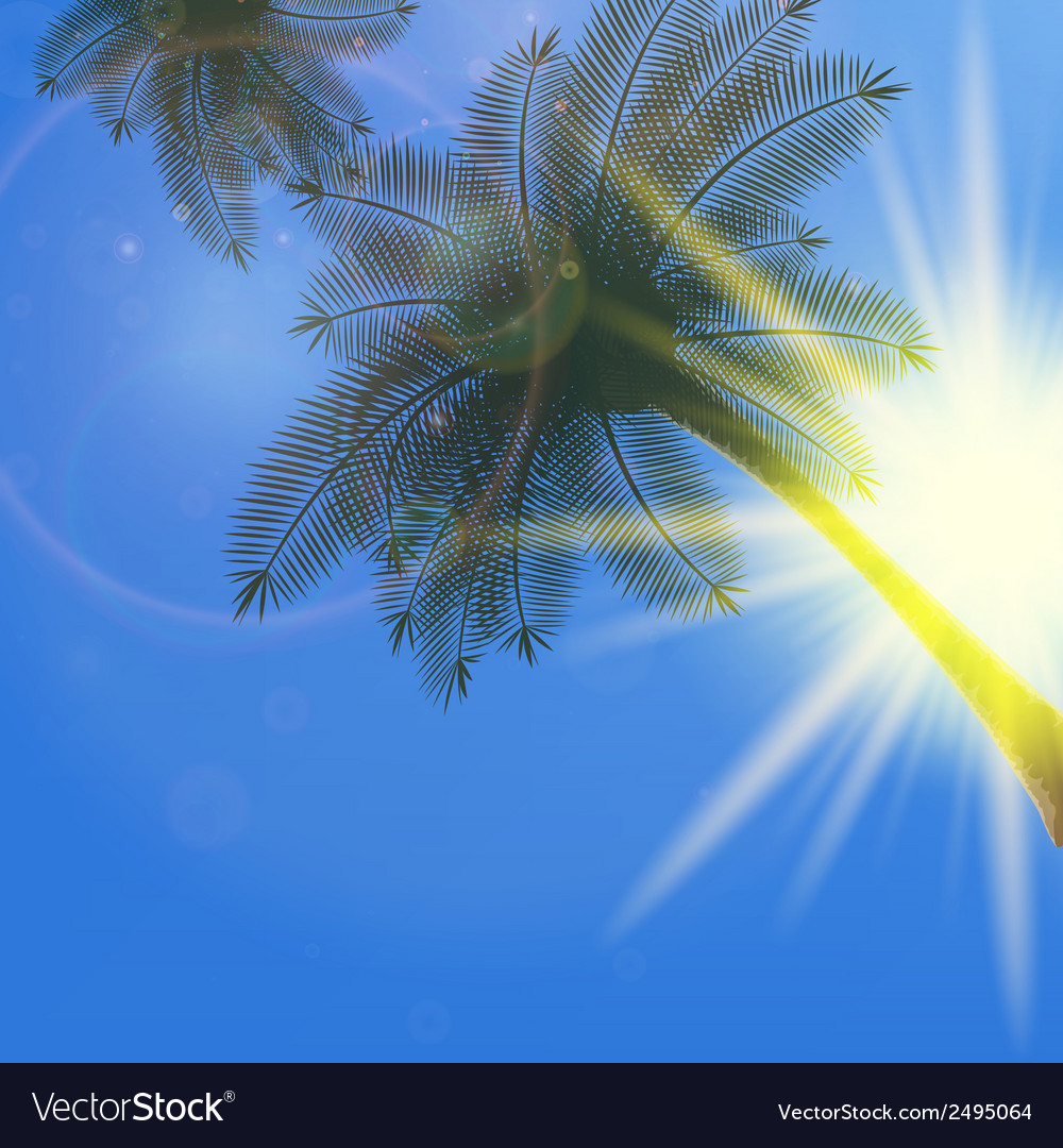 Blue sky with summer sun burst background vector | Price: 1 Credit (USD $1)