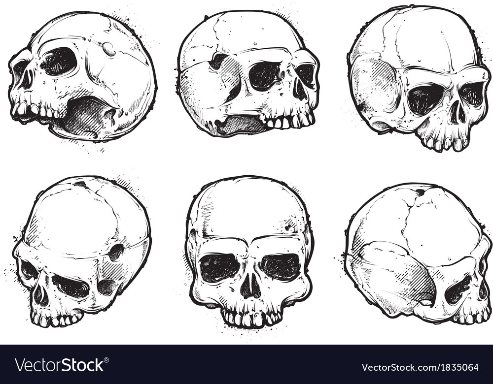 Skulls hand drawn set 1 vector | Price: 1 Credit (USD $1)