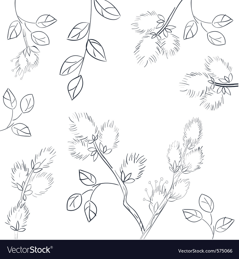Floral background with pussy willow vector | Price: 1 Credit (USD $1)
