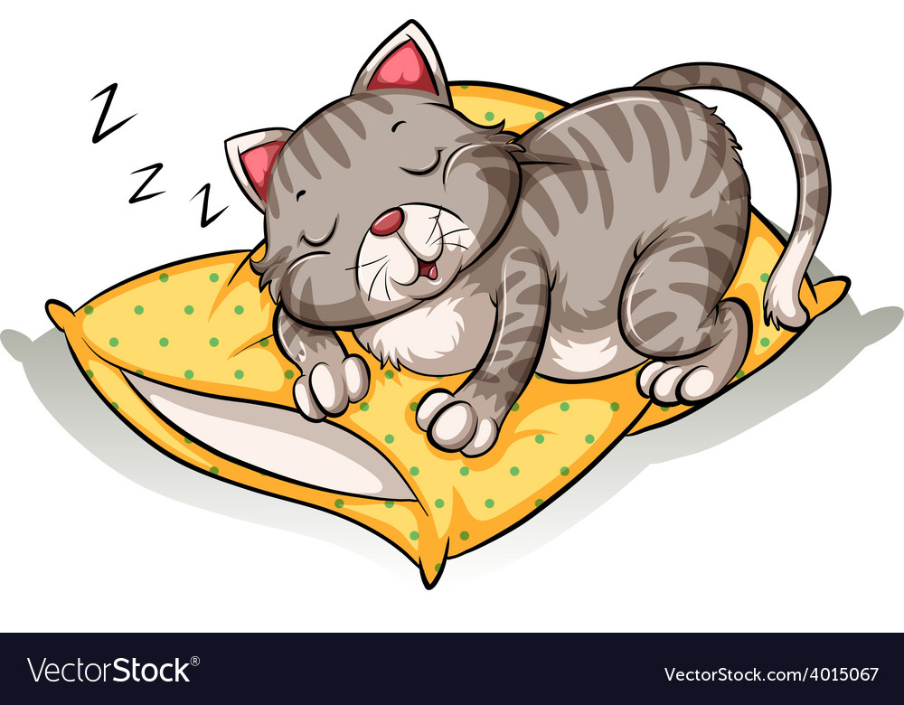 Cat sleeping above the pillow vector | Price: 3 Credit (USD $3)
