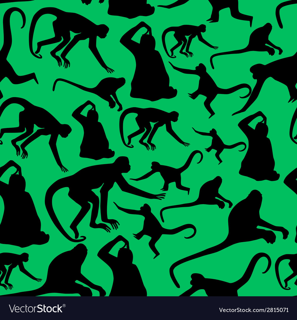 Monkey shadows silhouette green and black pattern vector