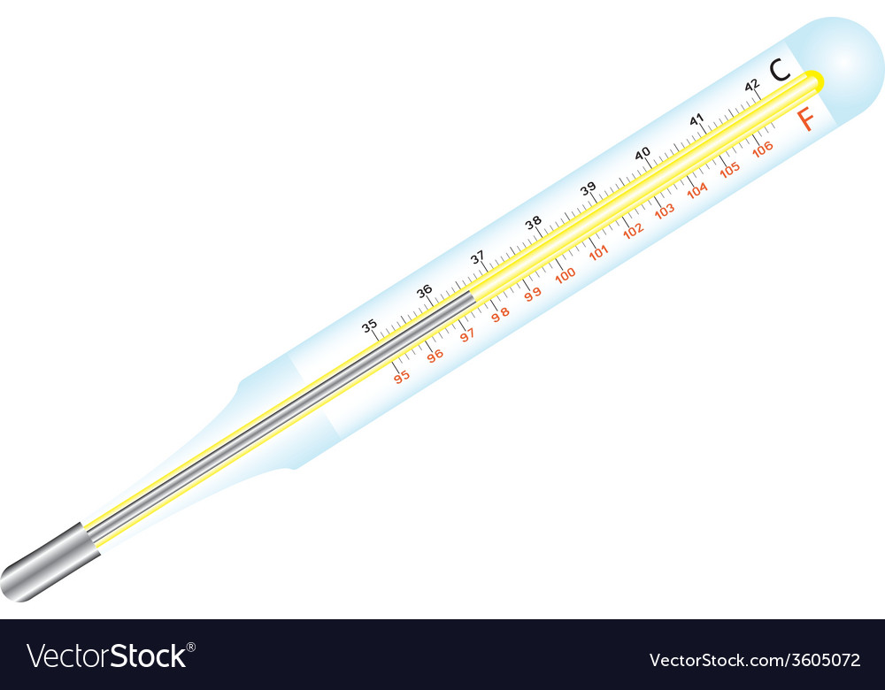 Medical thermometer vector | Price: 1 Credit (USD $1)
