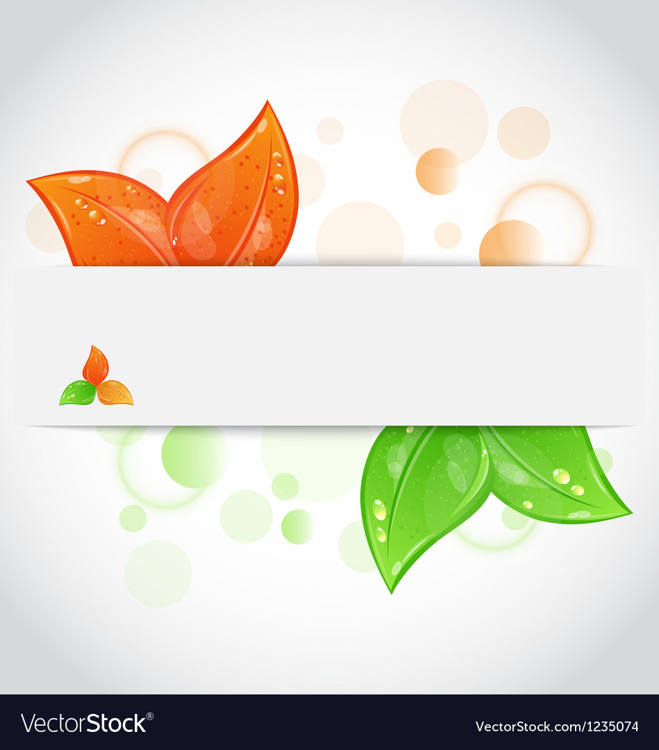 Autumn seasonal nature background with changing vector | Price: 1 Credit (USD $1)