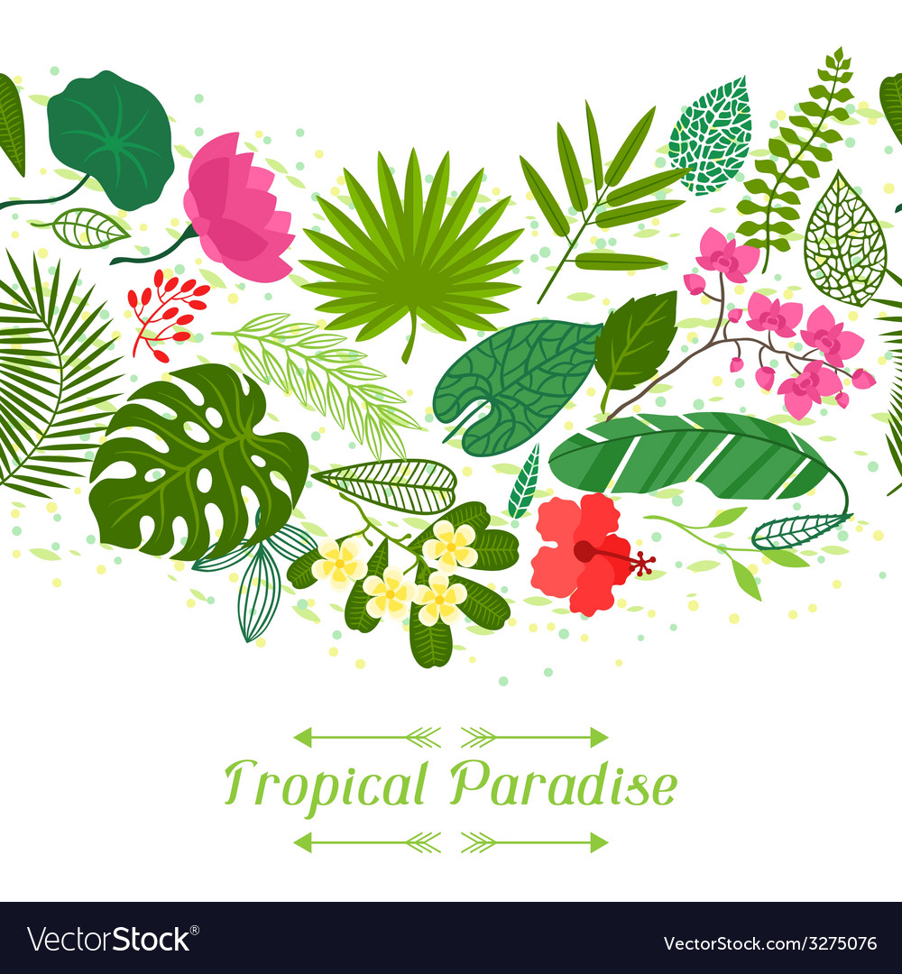 Tropical paradise card with stylized leaves and vector | Price: 1 Credit (USD $1)