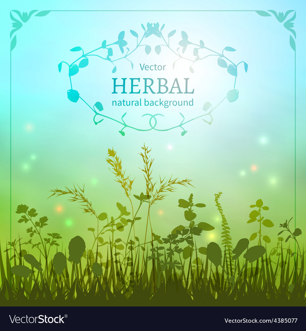 Delicate herbal background vector | Price: 1 Credit (USD $1)