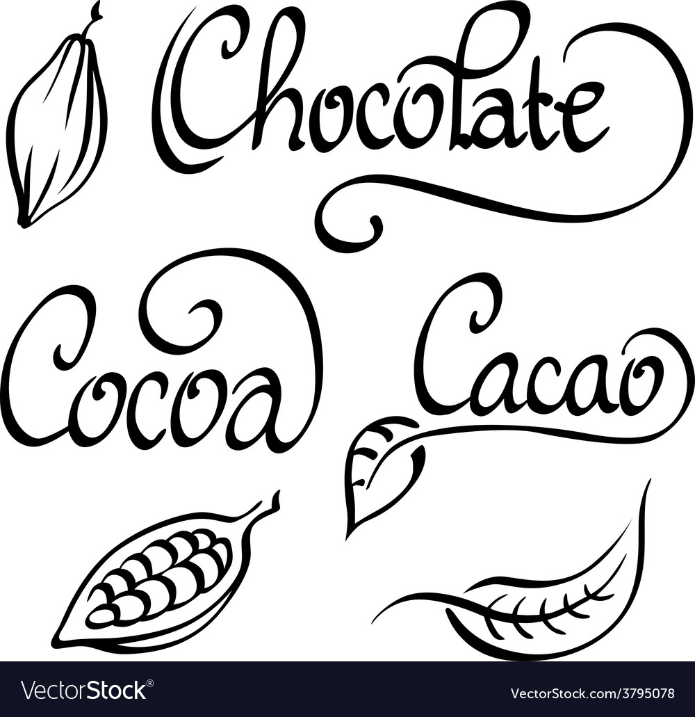 Chocolate cocoa cacao text vector | Price: 1 Credit (USD $1)