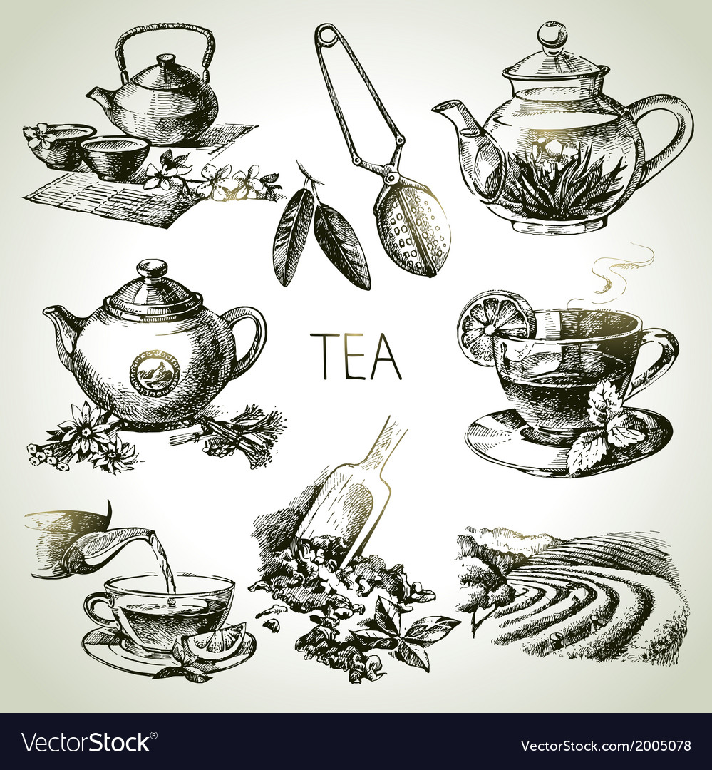 Hand drawn sketch tea set vector | Price: 1 Credit (USD $1)
